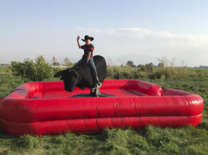 Mechanical bull available for rent.